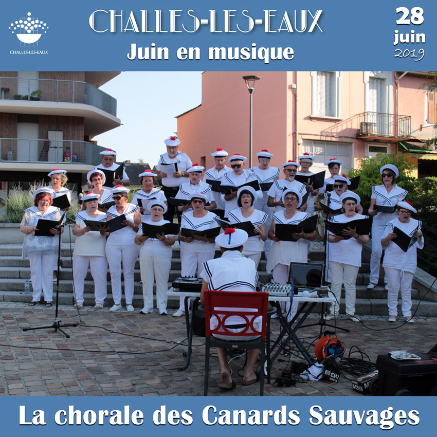 Concert Canards Sauvages